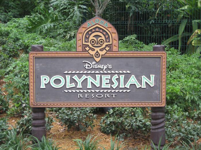 Walt Disney World poly