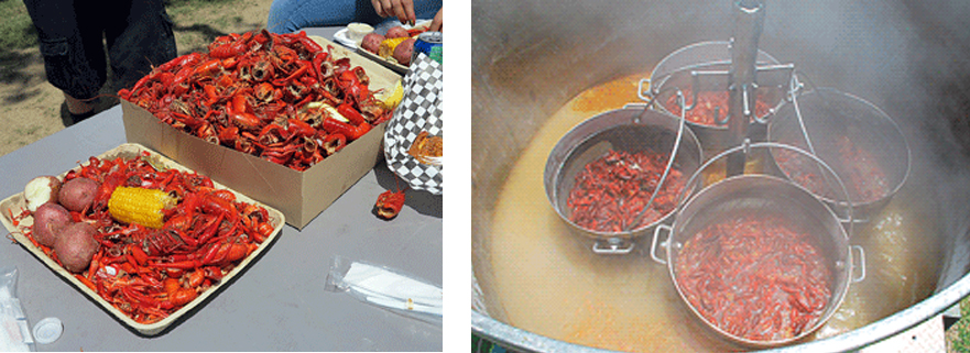 crawfish fest