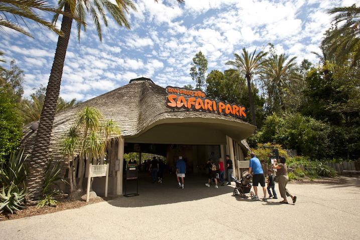 safariparkentrance