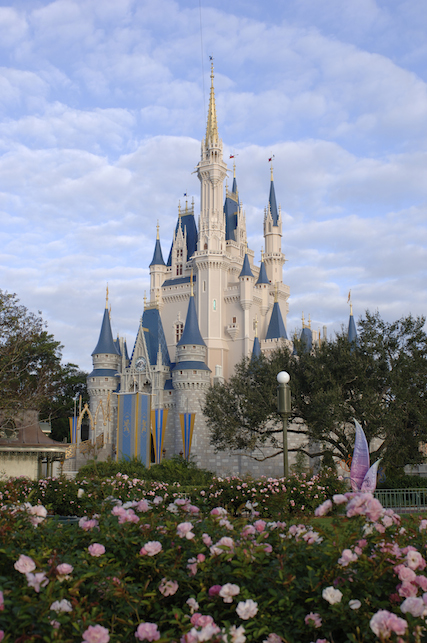 Fun Facts About Walt Disney World Family Choice Awards