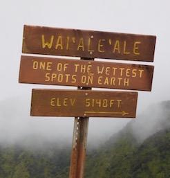 kauai-wettest-spot