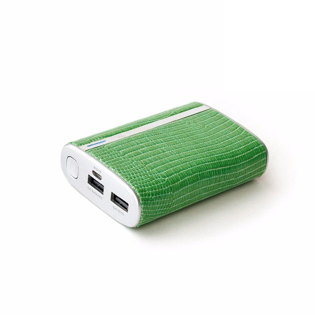 HALO Pocket Power 9000 Phone & Tablet Charger | Family