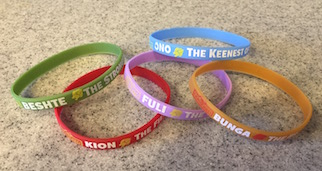 lionguardwristbands2